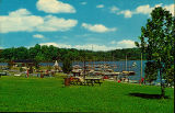 Acton Lake Marina