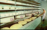 Alpine Cheese Factory